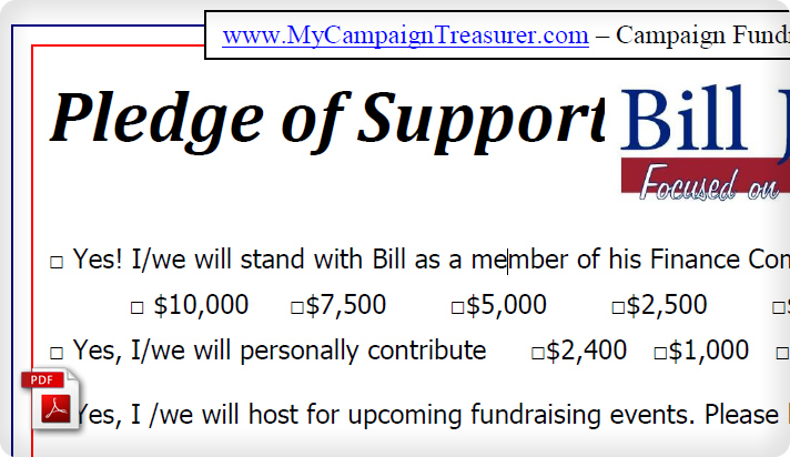 Political Campaign Contribution Form Example